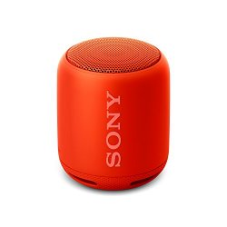 Sony SRS-XB10 Altoparlante Wireless Portatile,...