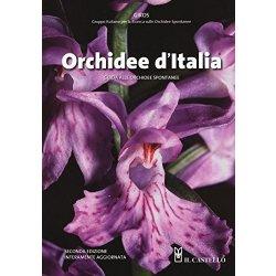 Orchidee dItalia. Guida alle orchidee spontanee